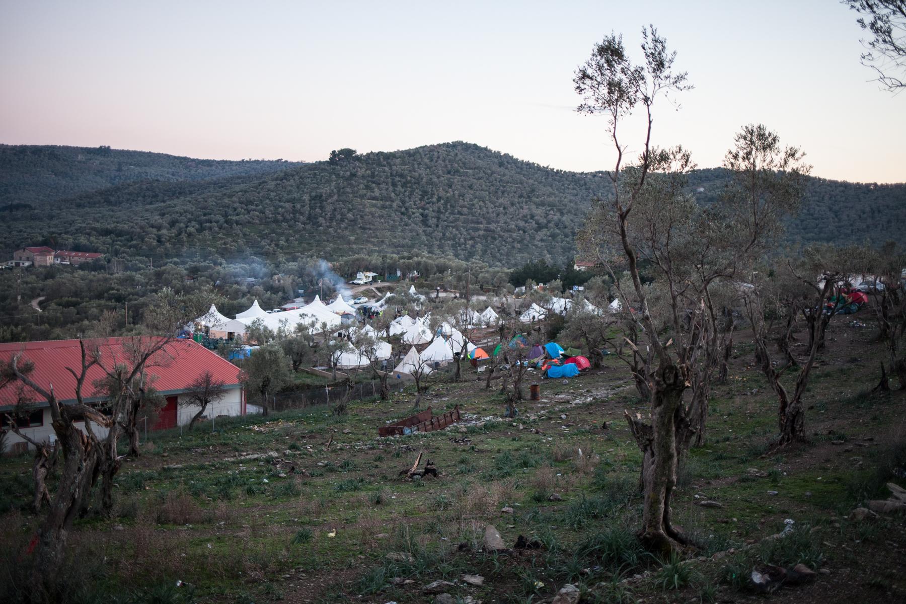 """Das Zeltlager """"Olive Grove"""" unter der Leitung der NGO """"Better Days For Moria"""" liegt gleich neben dem Transitlager Moria. Es gibt auch Geflüchtete die hier bleiben und helfen, da sie keine Aussicht auf Asyl haben."""